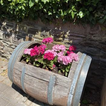 Ein 2. Leben für Weinfässer