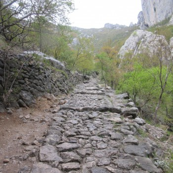 Nationalpark Palenica