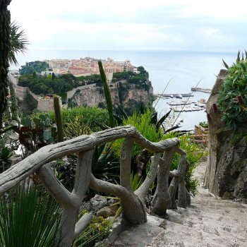 Der Exotische Garten von Monaco im Stadtbezirk Jardin Exotique