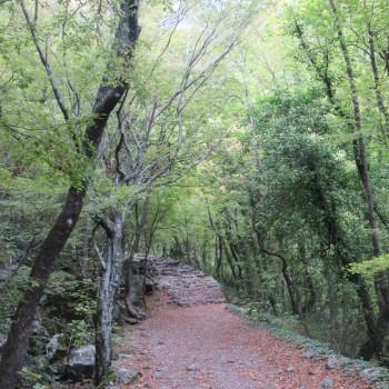 Nationalpark Paklenicia