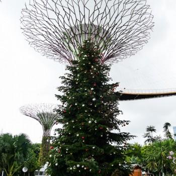 Weihnachtliches Singapur ~