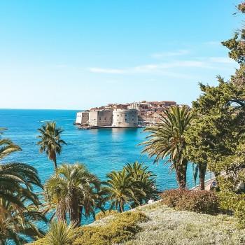Dubrovnik durch Palmen