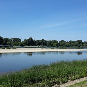 Rheinufer bei Biblis