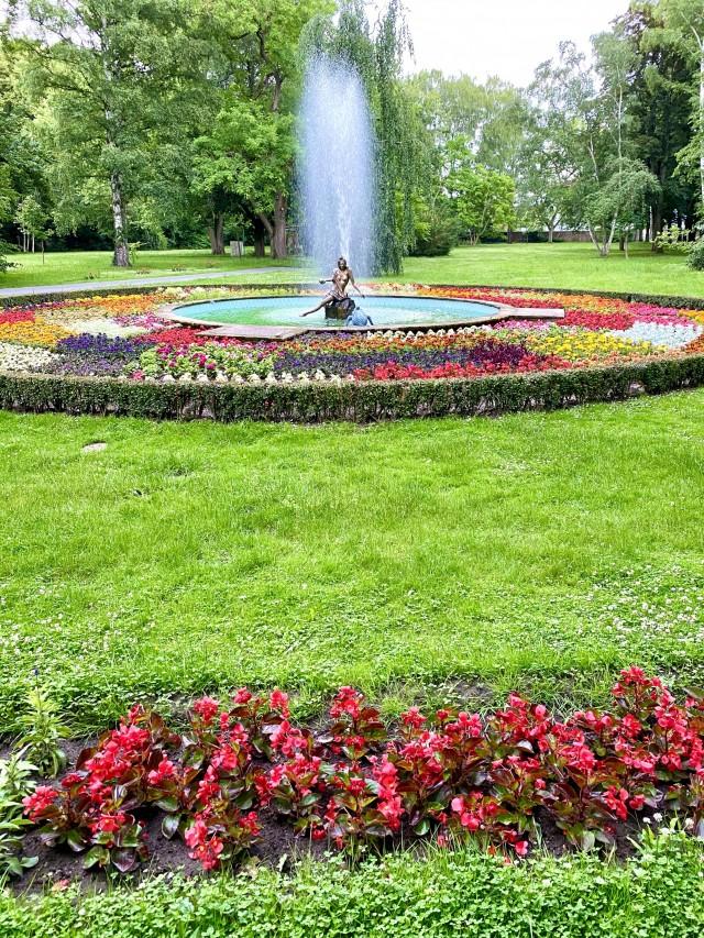 Blumenpracht im Schlosspark
