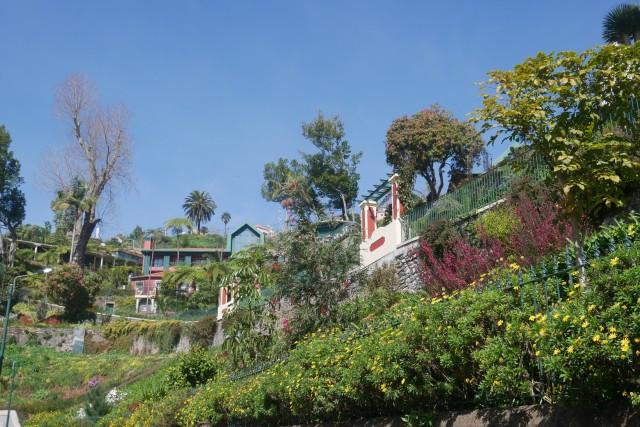 Die Botanischen Gärten des Berges Monte
