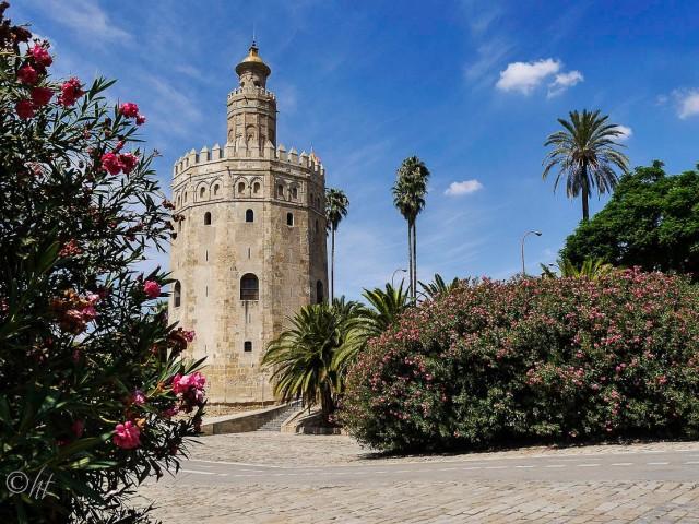 Torre del Oro ~ Goldturm ~ in Sevilla