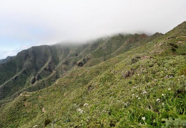 Landschaft bei Masca / Teneriffa