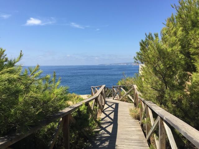 Auf dem Holzweg Richtung Meer