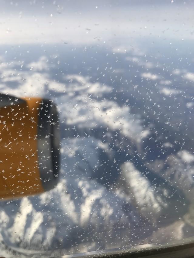 Auf dem Heimflug... Bis zum AIDASehen
