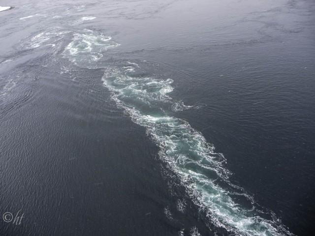 Der Saltstraumen ~ der stärkste Gezeitenstrom der Welt