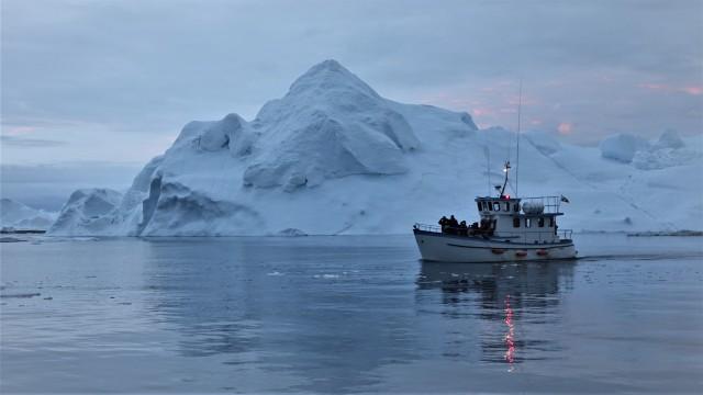 Eisberge erleben.