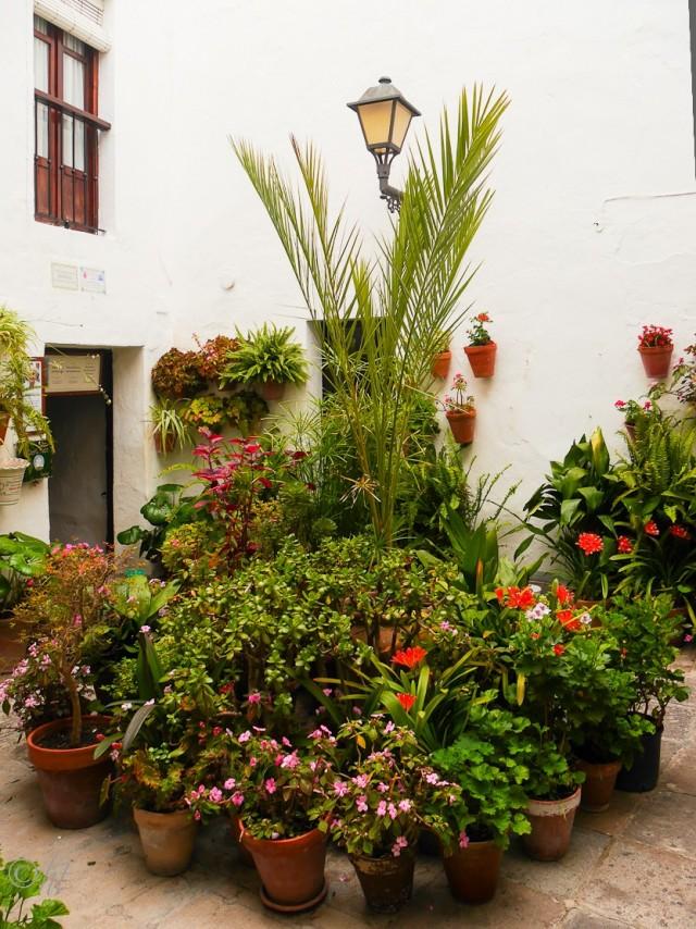 Manolo freut sich über einen Besuch in der Casa del Mayorazgo
