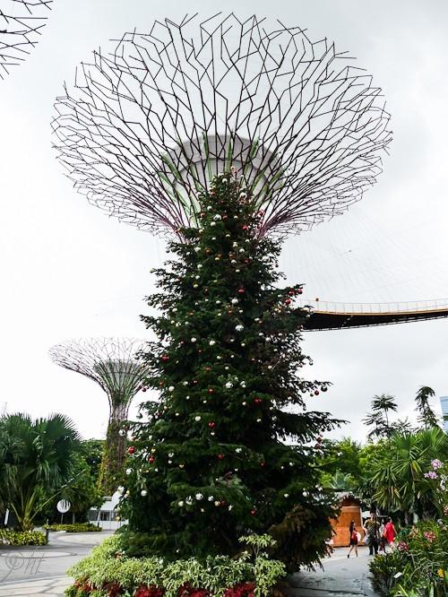 Weihnachtliches Singapur 🎄