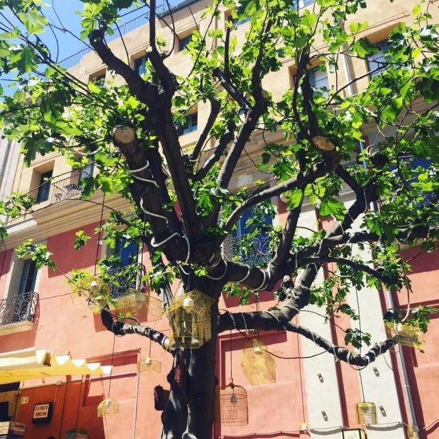 Der Lampenbaum