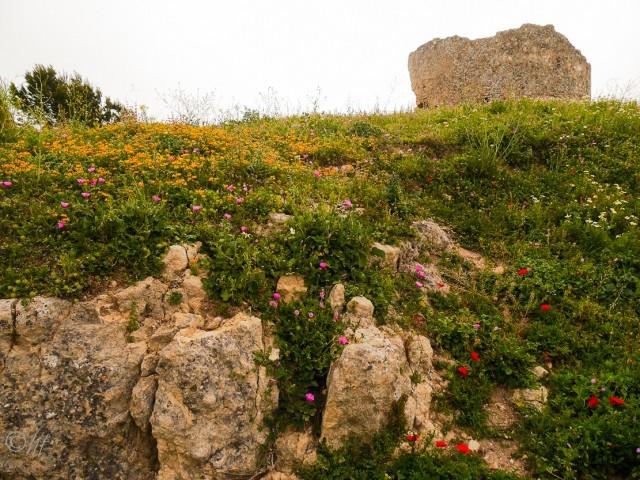 Castillo de Medina-Sidonia