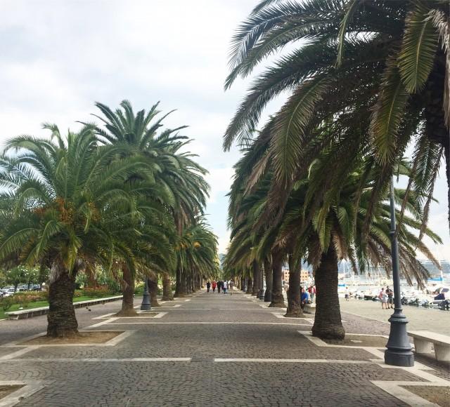Mit Palmen gesäumte Promenade