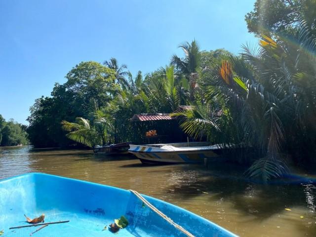 Per Boot zu den Mangroven