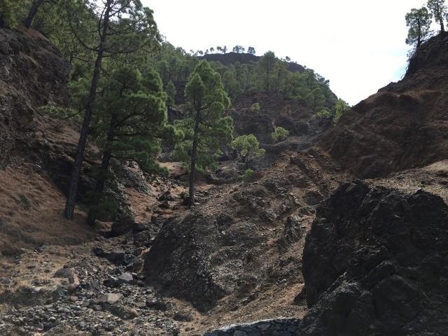 Nationalpark Cladera de Taburiente