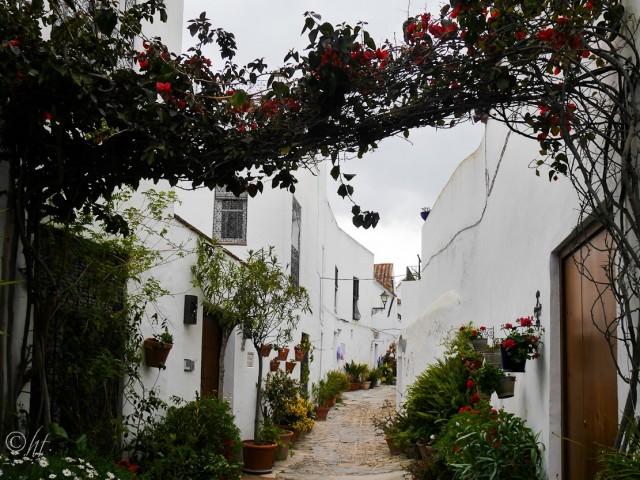 In den blumengeschmückten Gassen der Altstadt von Vejer de la Frontera findet man vorherrschend...