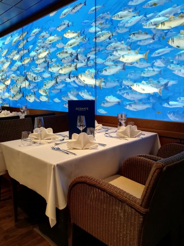 Fischschwarm beim Essen