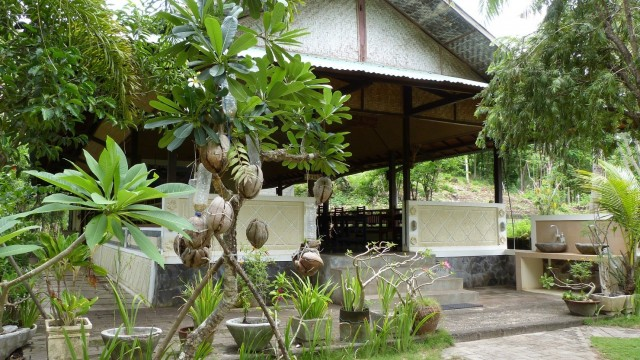 Australien/Indonesien mit AIDAvita