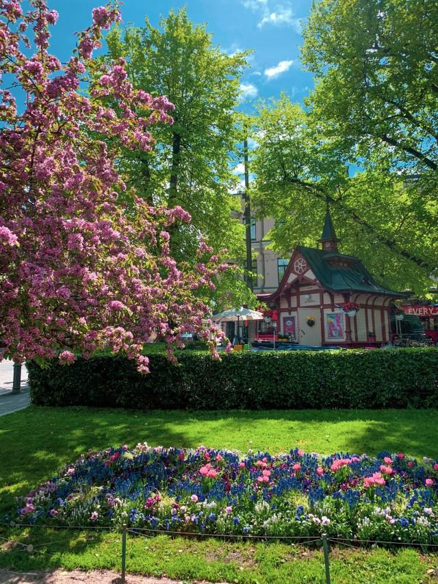 Park in Helsinki