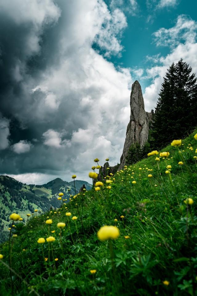 Das Ziel jeder Wanderung: Das Bergkreuz
