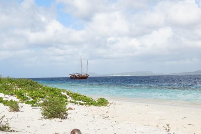 Schnorcheln auf klein Bonaire