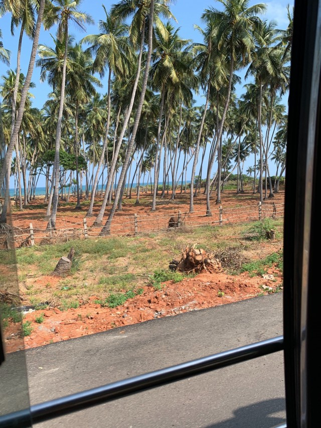 View out of the bus