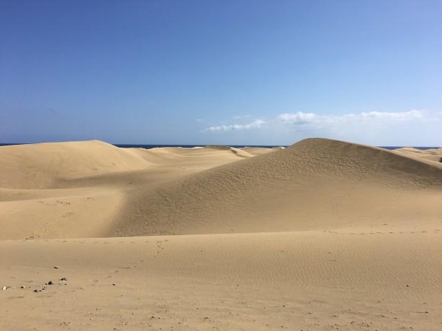 Wüste oder Strand?