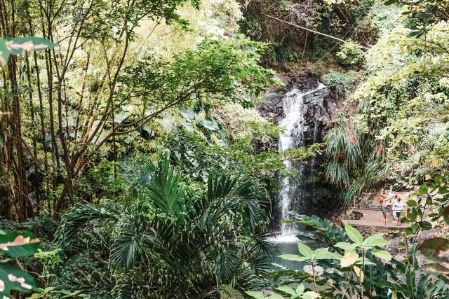 Kurzer Stopp im Regenwald
