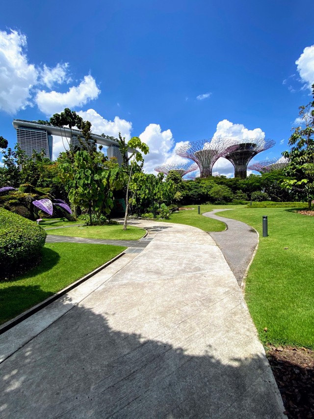 Gardens by the Bay bei Tag