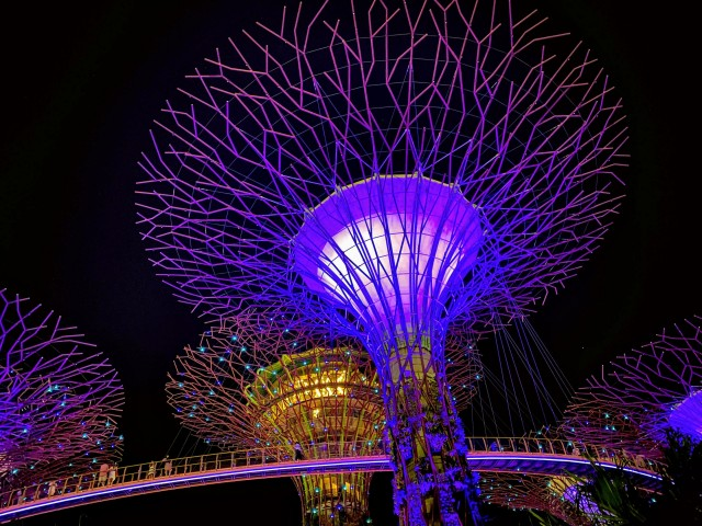 Supertrees & Skyway