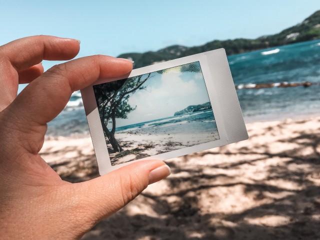 Palmen, Strand & Meer