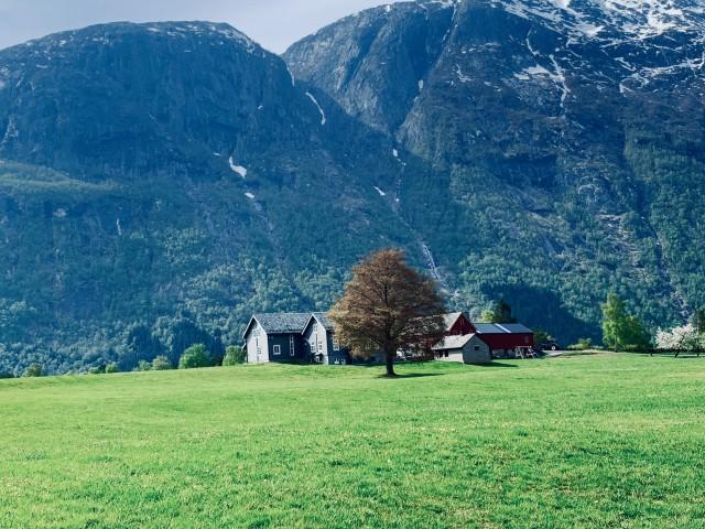 Idyllische Ruhe am Eidfjord