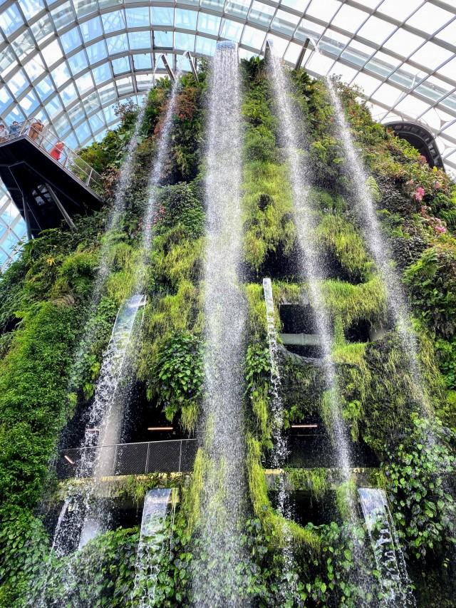 Der Wasserfall im Cloud Forest