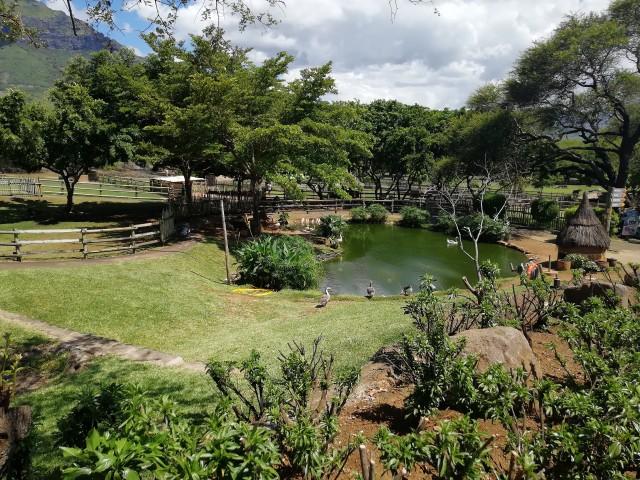 Casela Nature Park