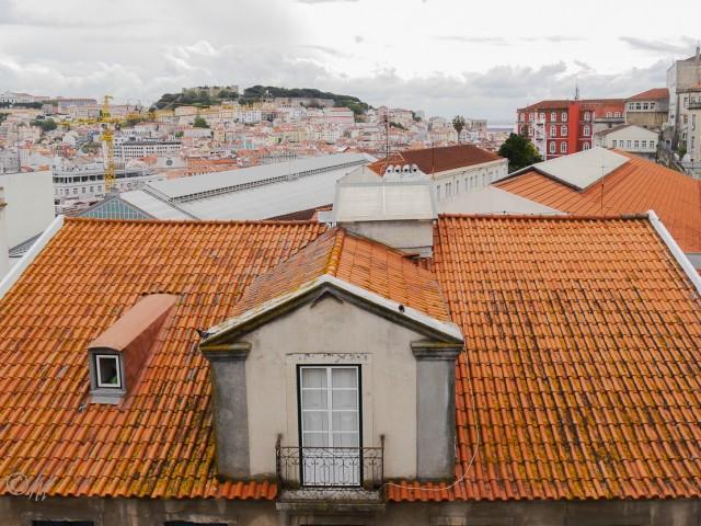 Der Aussichtspunkt São Pedro de Alcântara in Lissabon ...