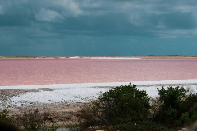 Salzgewinnung auf Bonaire