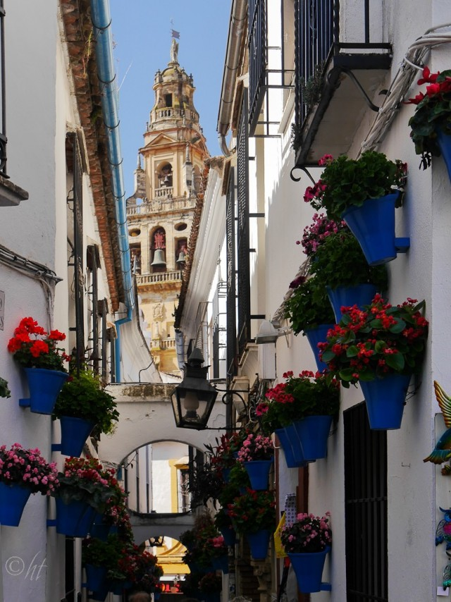 Calleja de las Flores ~ die Blumengasse mit der Mezquita-Catedral de Córdoba im Hintergrund