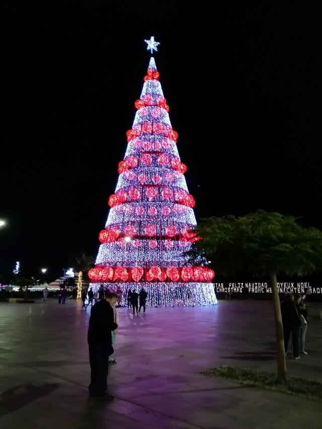 Weihnachtsmarkt Funchal