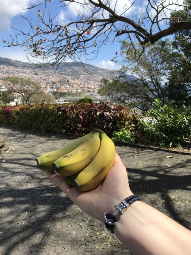 Kleine Bananen