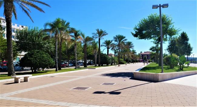 Palmenallee an der Strandpromenade