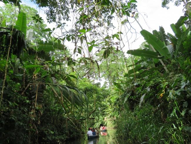 Kanufahrt durch den Regenwald