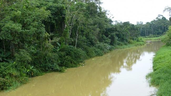 Mittelamerika mit AIDAmar